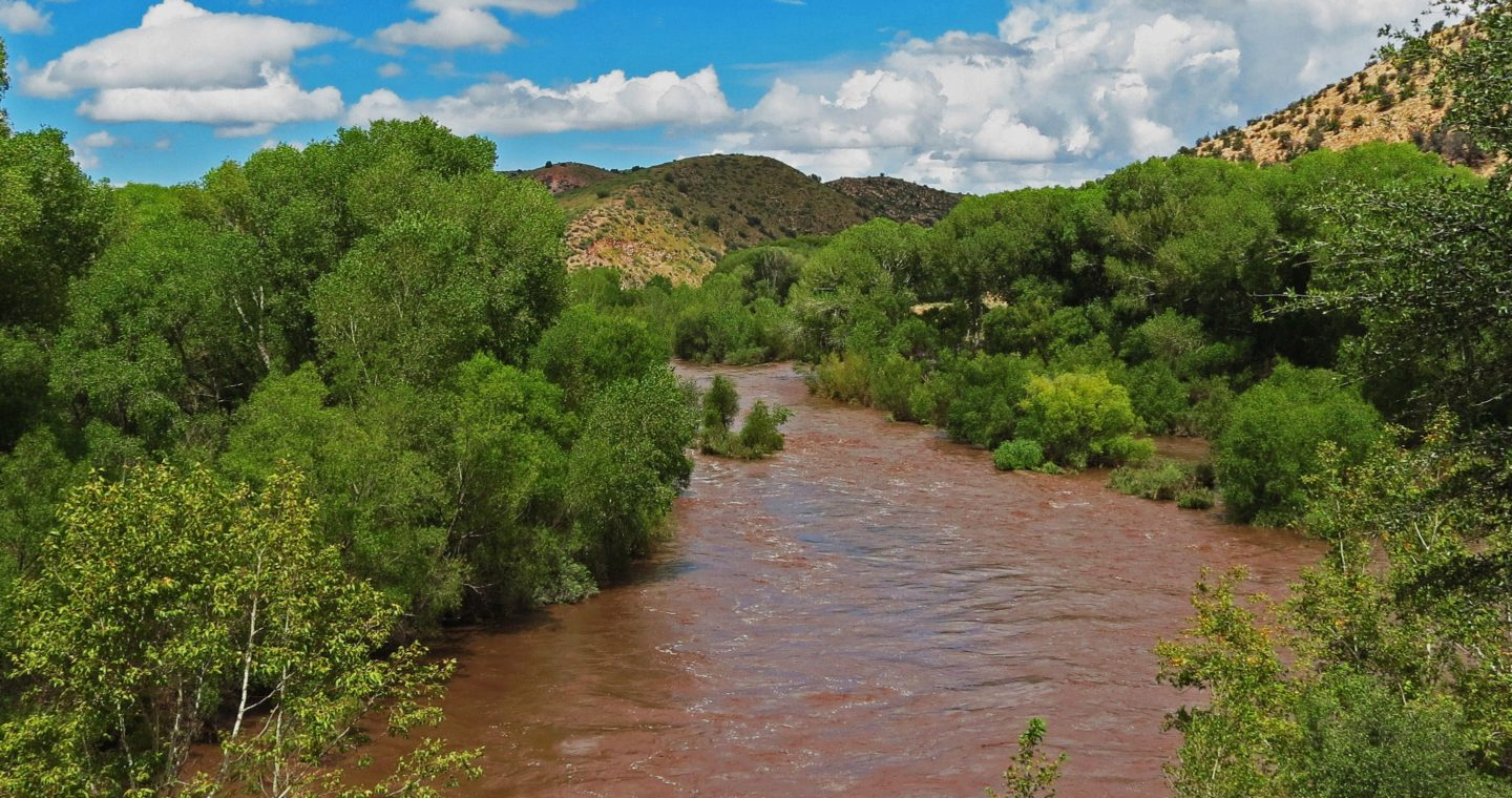 Gila River | Photo by Gila Conservation Coalition
