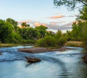 Gila River | Photo by Stephen Dorn