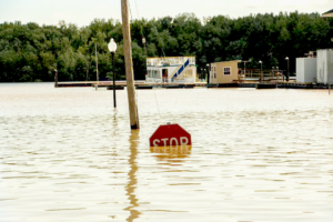 Flooding on the Upper Mississippi River | Photo by Talia Long